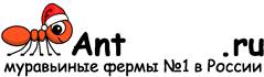 Муравьиные фермы AntFarms.ru - Ижевск
